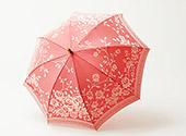 槇田商店の雨傘(バラ)