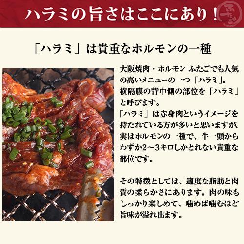 大阪焼肉・ホルモン ふたご はみ出たいハラミ(焼肉用)200g×5枚 ※送料無料