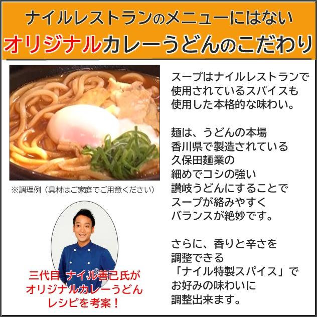 ナイルレストラン監修 マサラ カレーうどん(8食入) ※8月中旬〜下旬のお届け